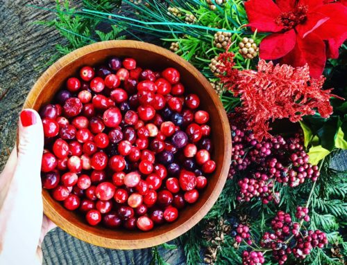 The nutrient packed Cranberry!